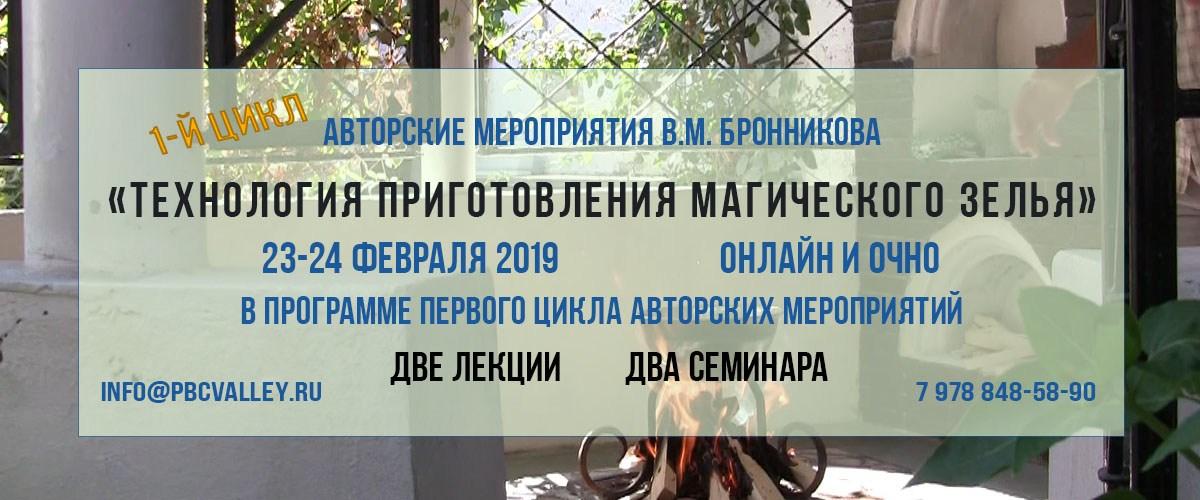 Авторские мероприятия В.М. Бронникова 23-24.02.2019 г.